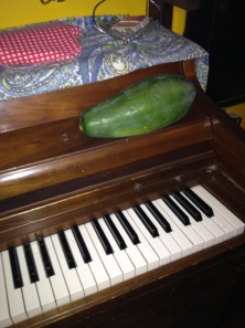 Here's a papaya on a piano at Your Healthy Kitchen. And oh yes, there is a piano.